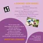 Activiteitenkaartje Beestjes zoeken Ne-Engels