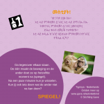 Activiteitenkaartje Spiegel! Nederlands- Tigrinya